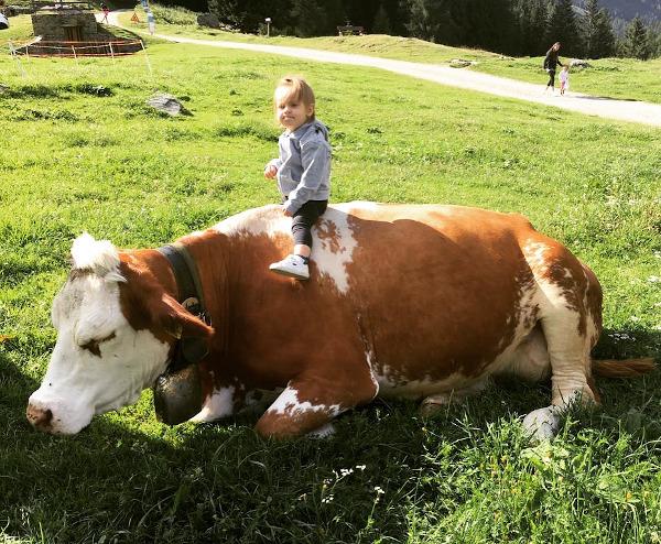 bambina seduta su mucca