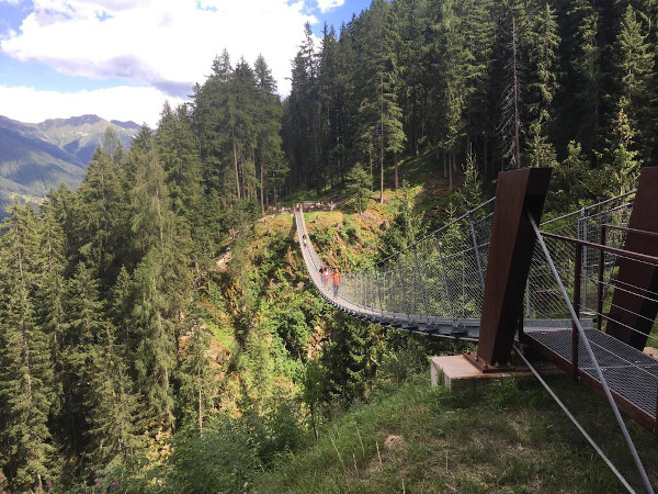 ponte sospeso nel vuoto circondato dal bosco