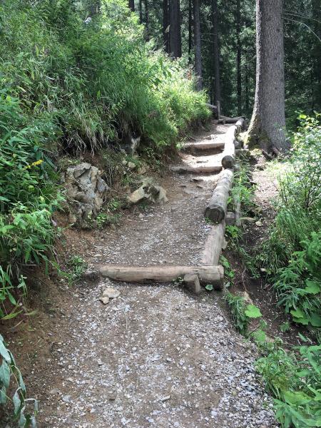 sentiero con scalini nel bosco