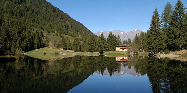 lago circondato da alberi con rifugio
