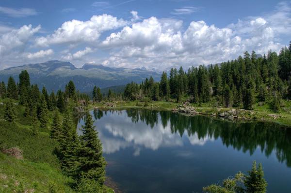 lago circondato da bosco