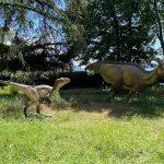 riproduzione di due esemplari di dinosauro