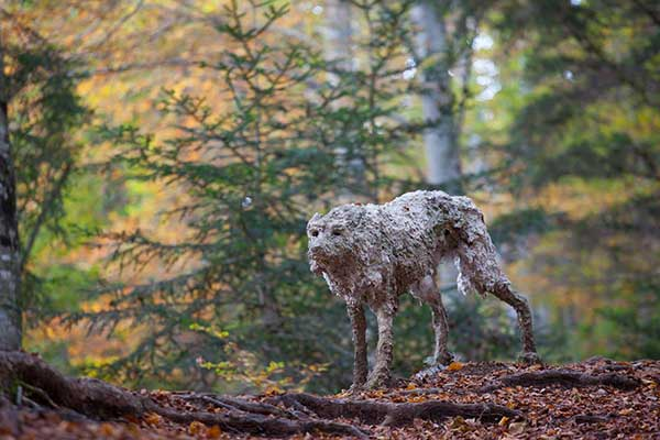 scultura liupo nel bosco artesella