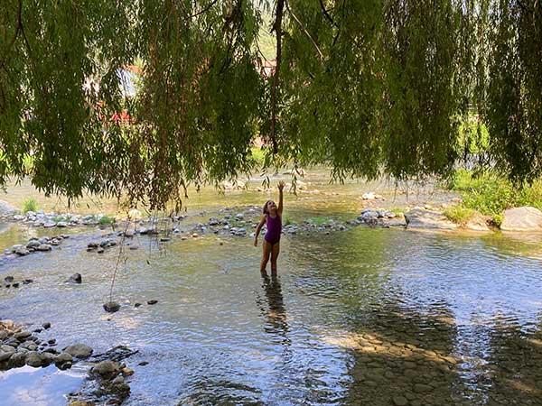 bimba fiume salice piangente