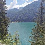 scorcio del lago circondato dagli alberi