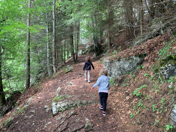 bambine che percorrono sentiero nel bosco