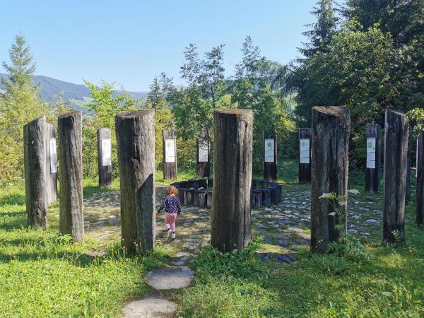 21 alberi in cerchio che simboleggiano l'oroscopo degli alberi