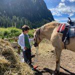 bambino con cavallo