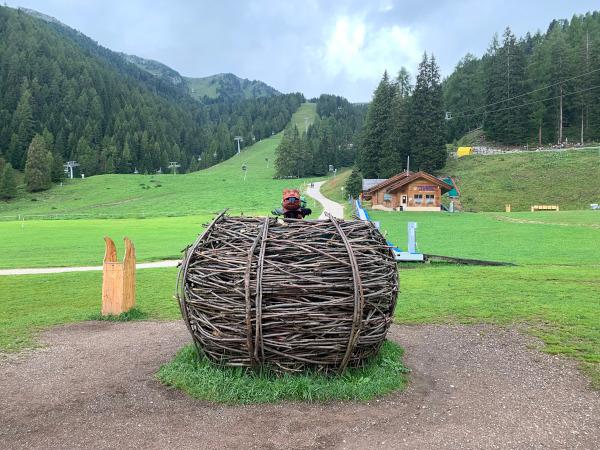 grande nido su distesa erbosa
