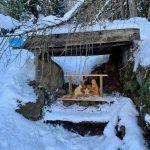 presepe tradizionale in legno immerso nella neve