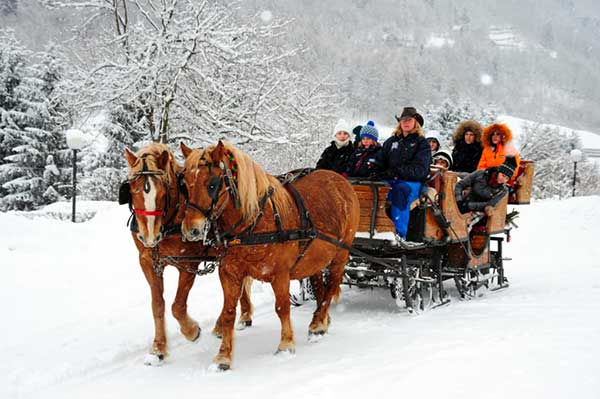 famiglia in carrozza trainata dalla neve
