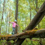 bambina cammina su un tronco nel bosco