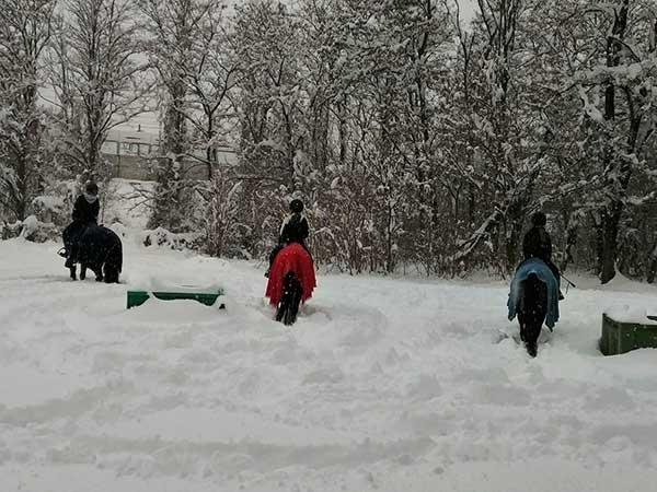bambini a cavallo nella neve