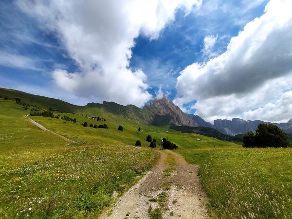 sentiero sterrato di montagna