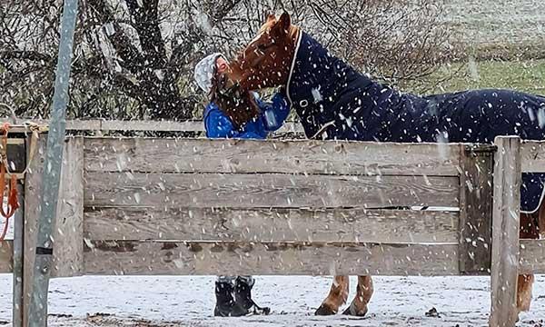 ragazza con cavallo sotto la neve