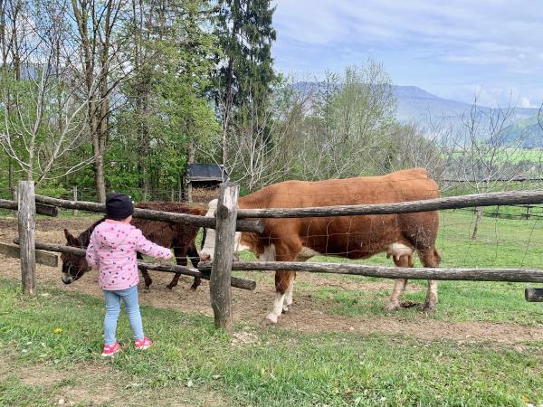 bambina che accarezza mucca