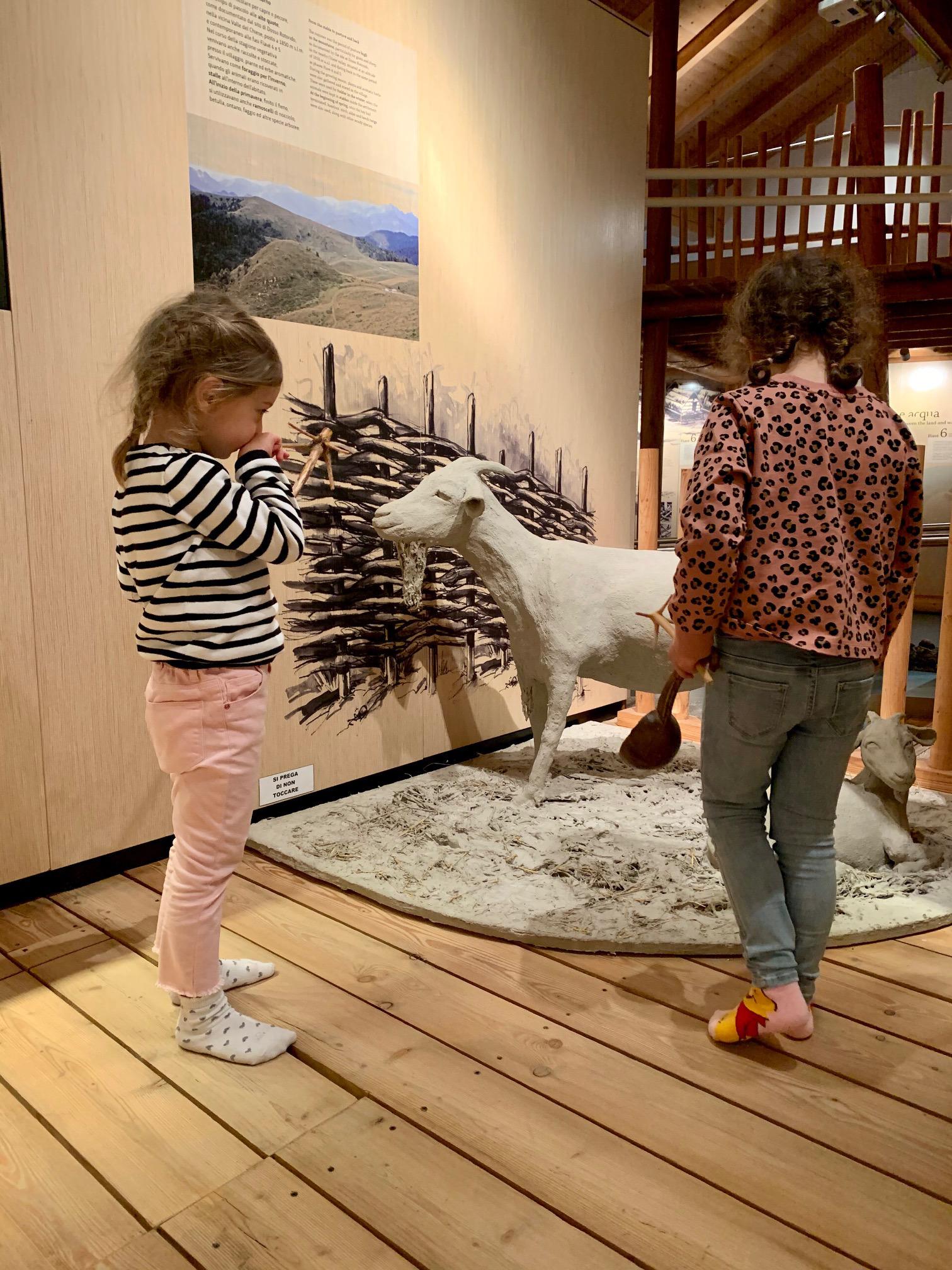 bambine con riproduzione di capra