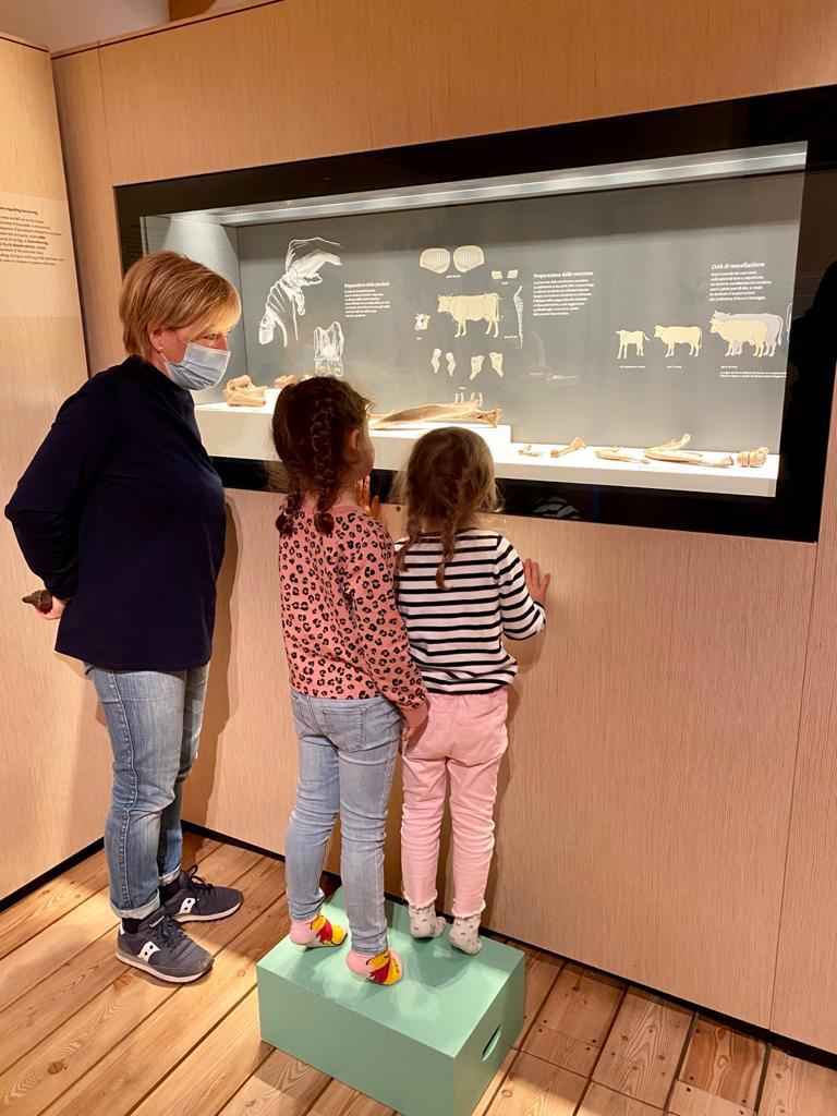 bambine con guida del museo che guardano reperti archeologici