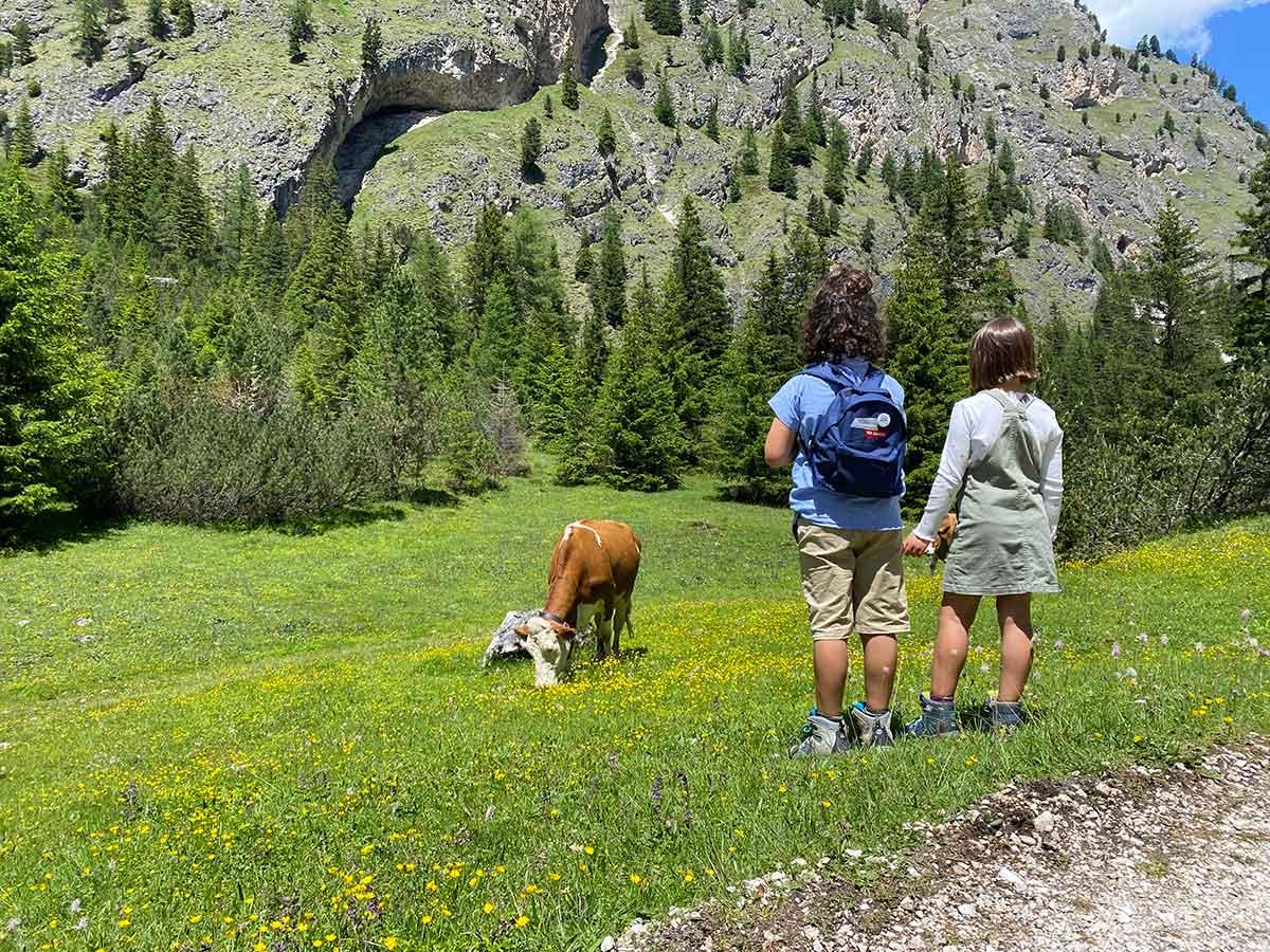 bambini di spalle guardano una mucca