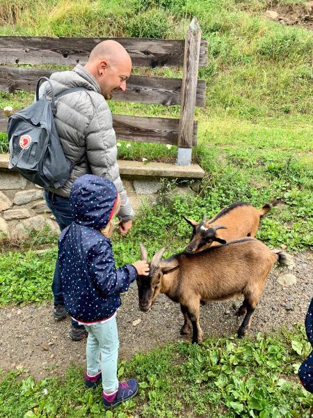 famiglia con capre