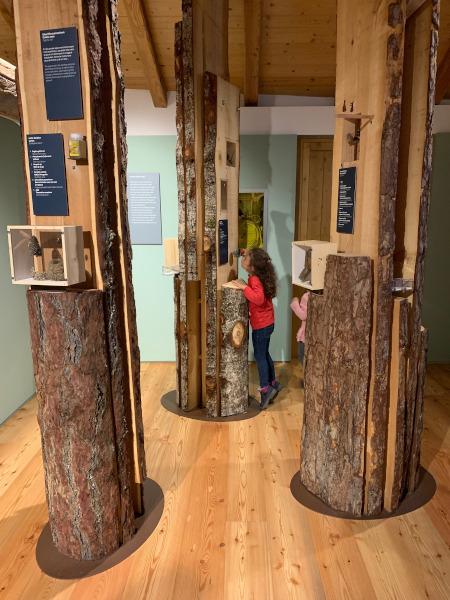 bambina che annusa i tronchi d'albero