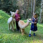 bambini con alpaca